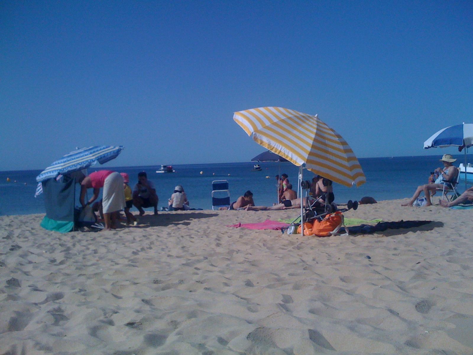 beach knitter
